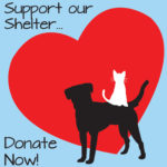 Special Pals Shelter - Donate Now