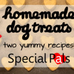 Homemade Dog Treats - Special Pals Shelter