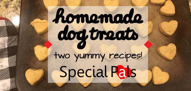 Homemade Dog Treats - Special Pals Shelter