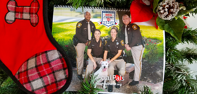 Special Pals - 12 Days of Giving - Holiday Gifting