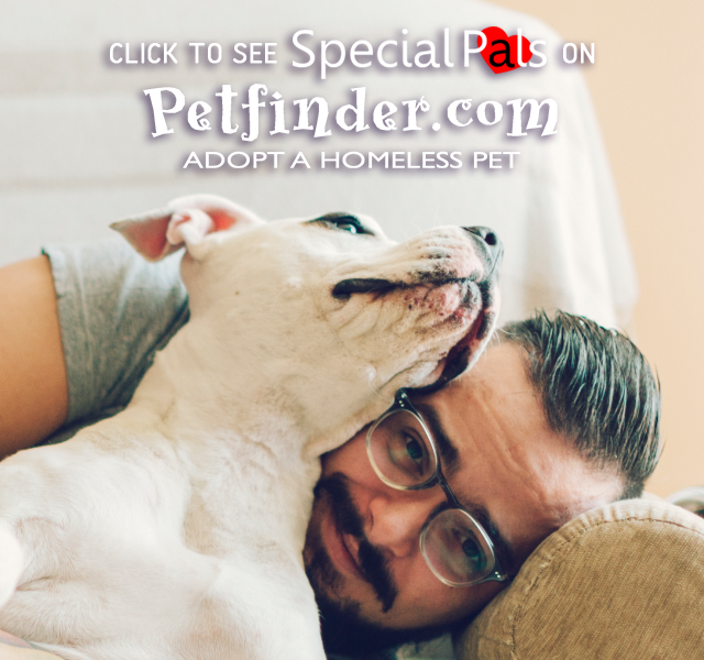 Special Pals - Adopt a Pet on Petfinder