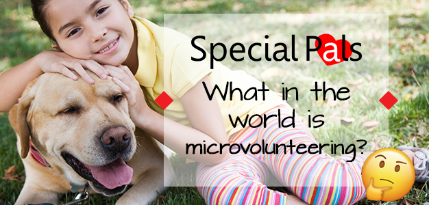 Microvolunteering for Special Pals