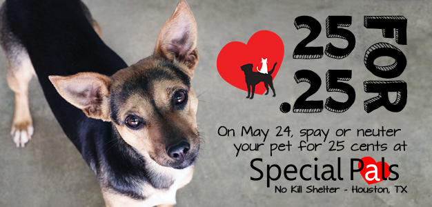 Special Pals - 25 Cent Spay & Neuter - 25 For 25