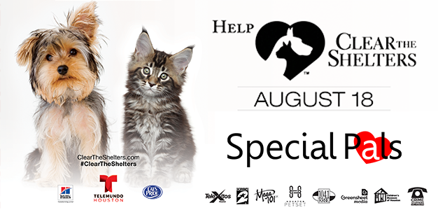 Clear The Shelters 2018 - Special Pals Shelter