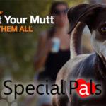 Strut Your Mutt Walk Houston 2018 - Special Pals