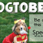 DOGtober- Be Our Hero in October - Special Pals