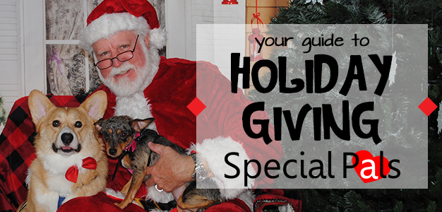 Support Special Pals This Christmas - Special Pals Shelter - Katy TX