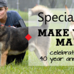 Make Your Mark - Sponsor Special Pals in 2019 - No Kill Houston