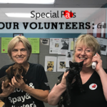 Meet Our Volunteers - Special Pals Shelter - No Kill Houston